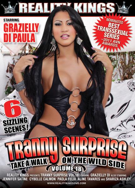 Tranny Surprise 18 (2011)