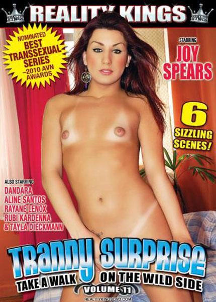 Tranny Surprise 11 (2010)