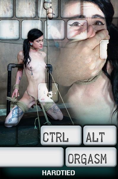 Ctrl-Alt-Orgasm