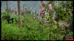 Kate Winslet - Iris (2001) HD 720p 1008_s