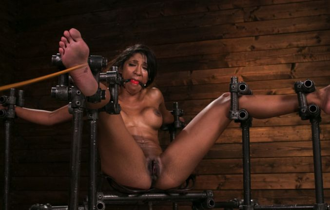 Fresh Meat – Sadie Santana