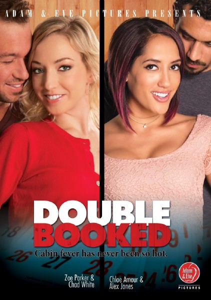 Double Booked 1080p Cover