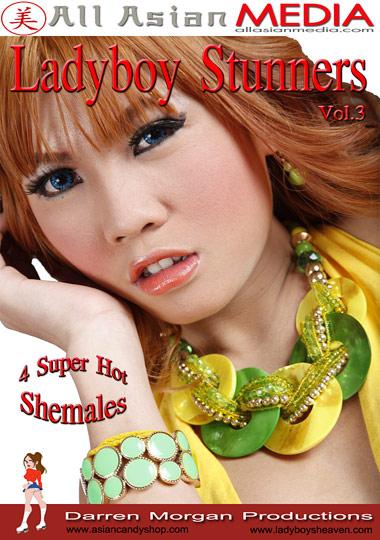 LadyBoy Stunners 3 (2013)