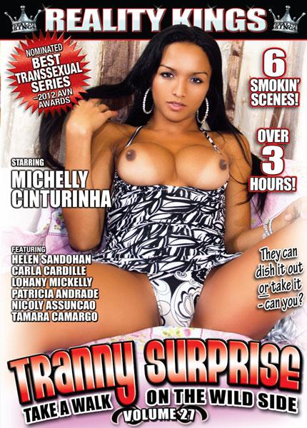 Tranny Surprise 27 (2013)