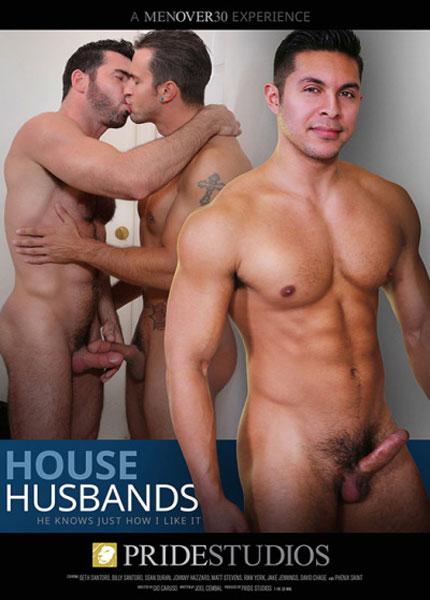 House Husbands (2015)