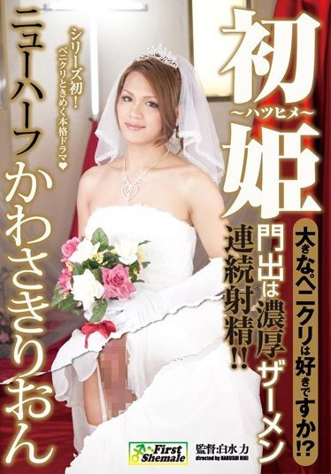 Do You Like The First Big Wedding Princess Kawasaki Lion Transsexual (2011)