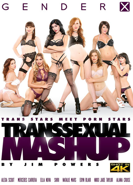 Transsexual Mashup (2017)