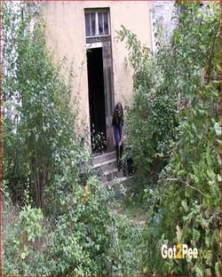File name: video-back-garden_1080p