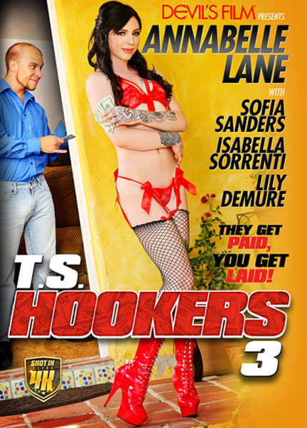 T.S. Hookers 3 (2017)