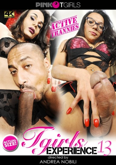 T-Girl Experience 13 (2017)
