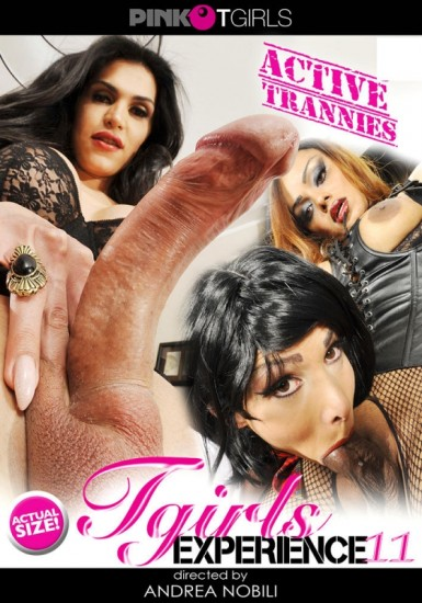 T-Girl Experience 11 (2016)