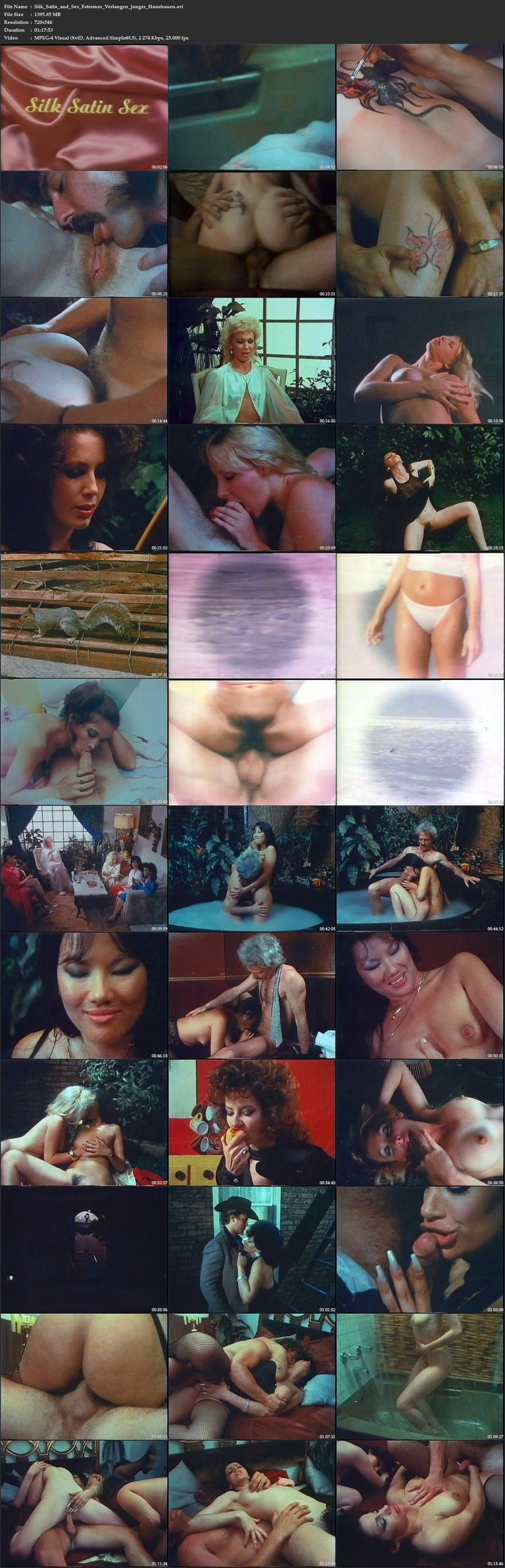 http://ist3-6.filesor.com/pimpandhost.com/1/_/_/_/1/4/i/t/f/4itfX/Silk_Satin_and_Sex_Extremes_Verlangen_junger_Hausfrauen.avi_l.jpg