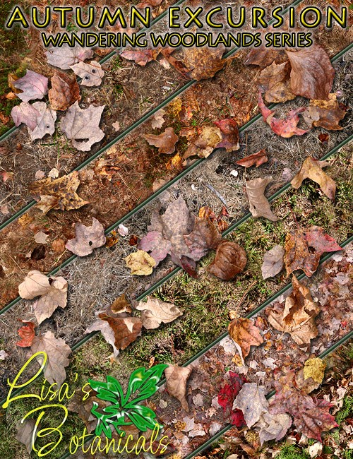 Lisa's Botanicals - Autumn Excursion