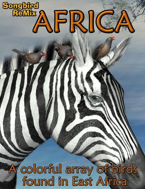 Songbird ReMix: Africa