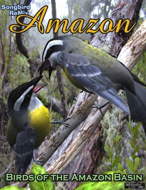 Songbird ReMix: Amazon