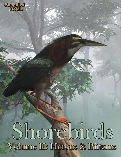 Songbird ReMix: Shorebirds Volume II