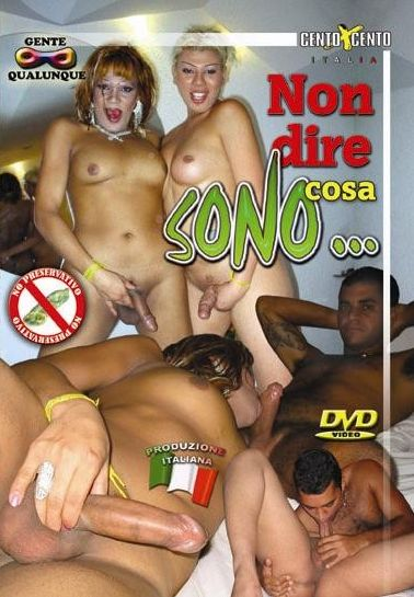 Non Dire Cosa Sono (2007)