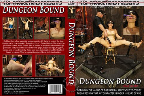http://ist3-6.filesor.com/pimpandhost.com/1/_/_/_/1/4/n/e/k/4nekh/Dungeon%20Bound_m.jpg