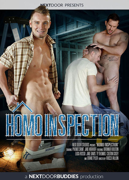 Homo Inspection (2017)