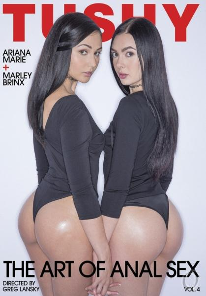 The Art of Anal Sex 4 (2017)