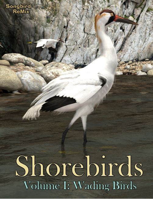 Songbird ReMix: Shorebirds Volume I