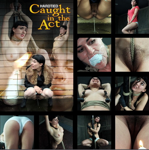 HARDTIED: Apr 26, 2017: Caught In The Act | Olive Glass