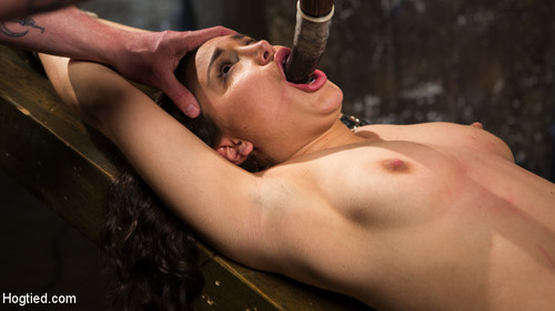HOGTIED: April 27, 2017 –  Gabriella Paltrova and The Pope
