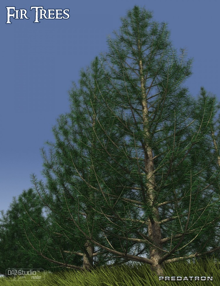 Predatron Fir Trees