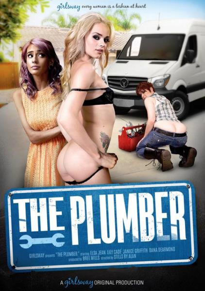 The Plumber (2017)