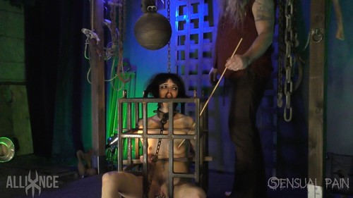 Mar 15, 2017: Caged Predicaments - Abigail Dupree - Master James