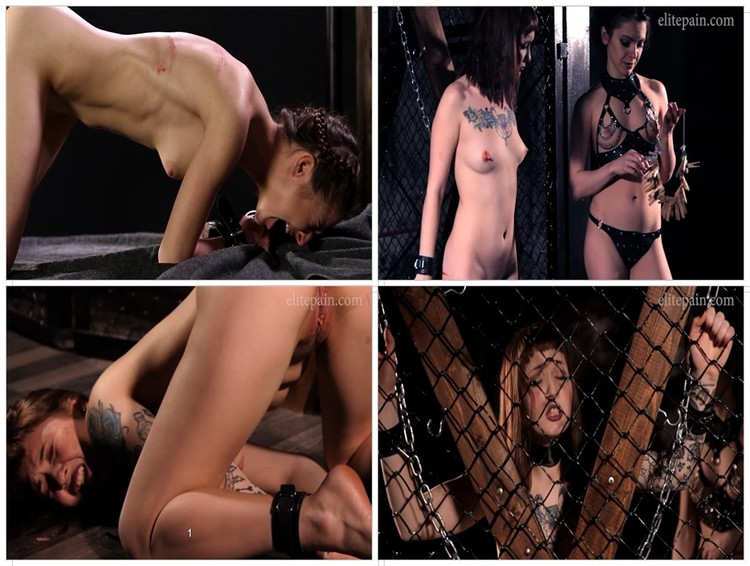 Free hustler nudity