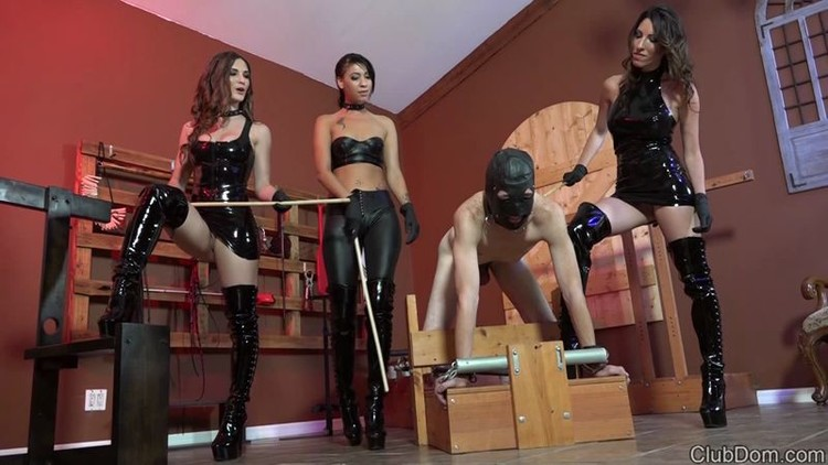 Caning cbt chastity domination female training