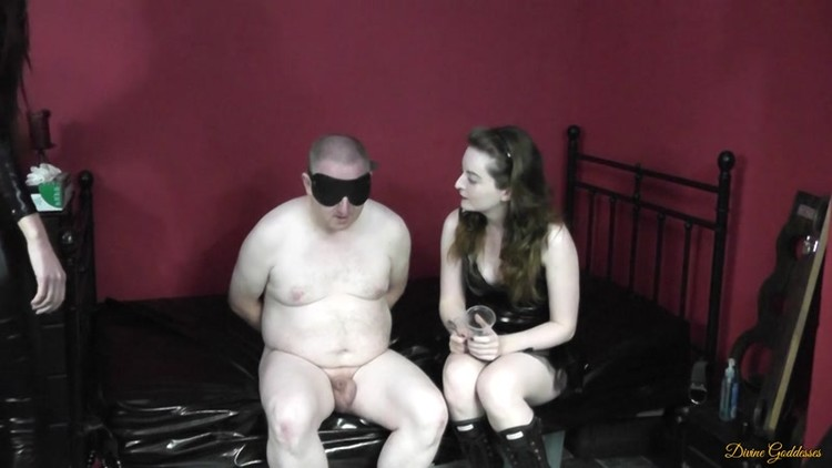 Pussy slave powered by vbulletin — pic 6