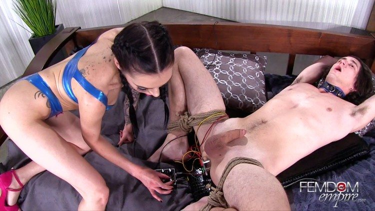 Anal ass bdsm pain femdom adult archive