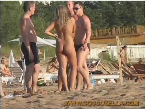 http://ist3-6.filesor.com/pimpandhost.com/9/6/8/3/96838/4/R/0/C/4R0C6/Coccozella089_cover.jpg